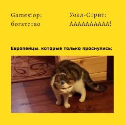мем - gamestop и reddit - когда ничего не понимаешь