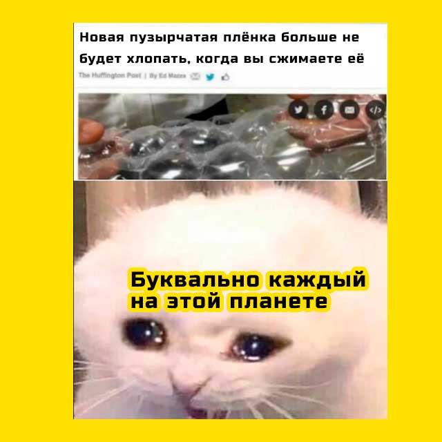 грустный кот мем плачет