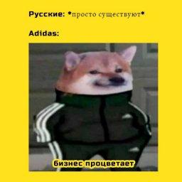 мем - взаимоотношения русских и компании Adidas