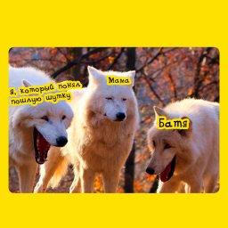 три волка смеются мем