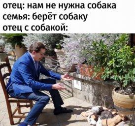 понасенков собакой