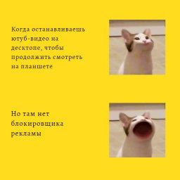 кот хлопает ртом мем