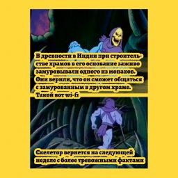 мем - факты от Скелетора - wi-fi