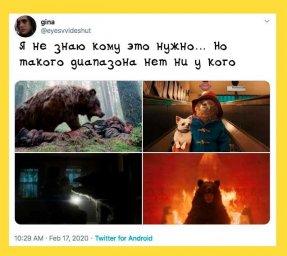 нет такого диапазона: Медведь