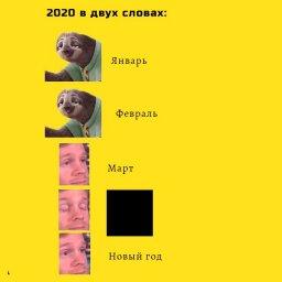 мем - о том как прошел 2020